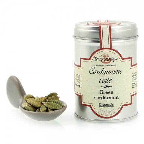Cardamone verte