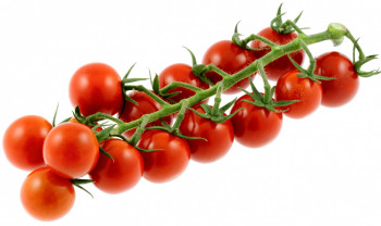 Tomate Cerise Grappe Extra «les jardins de Rabelais»